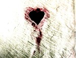 openphotonet_Bleeding%20Heart