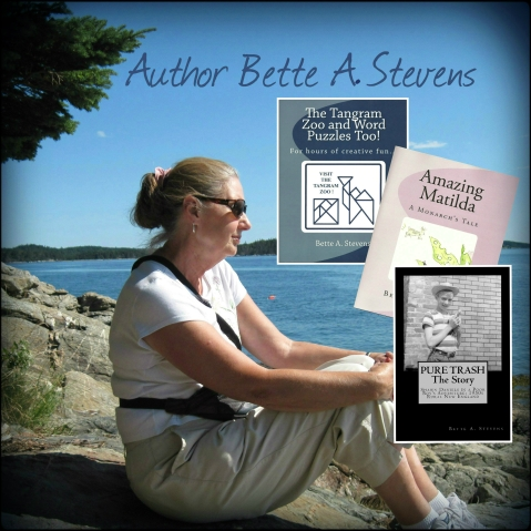 Author Bette A Stevens