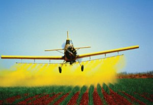 pesticide-spraying[1]