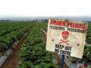 danger_pesticides[1]